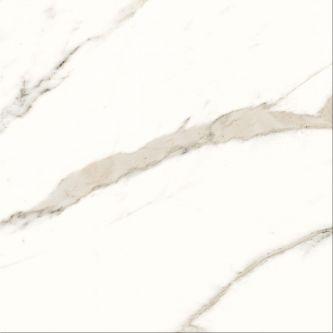 Trilogy Calacatta white 58x58 cm